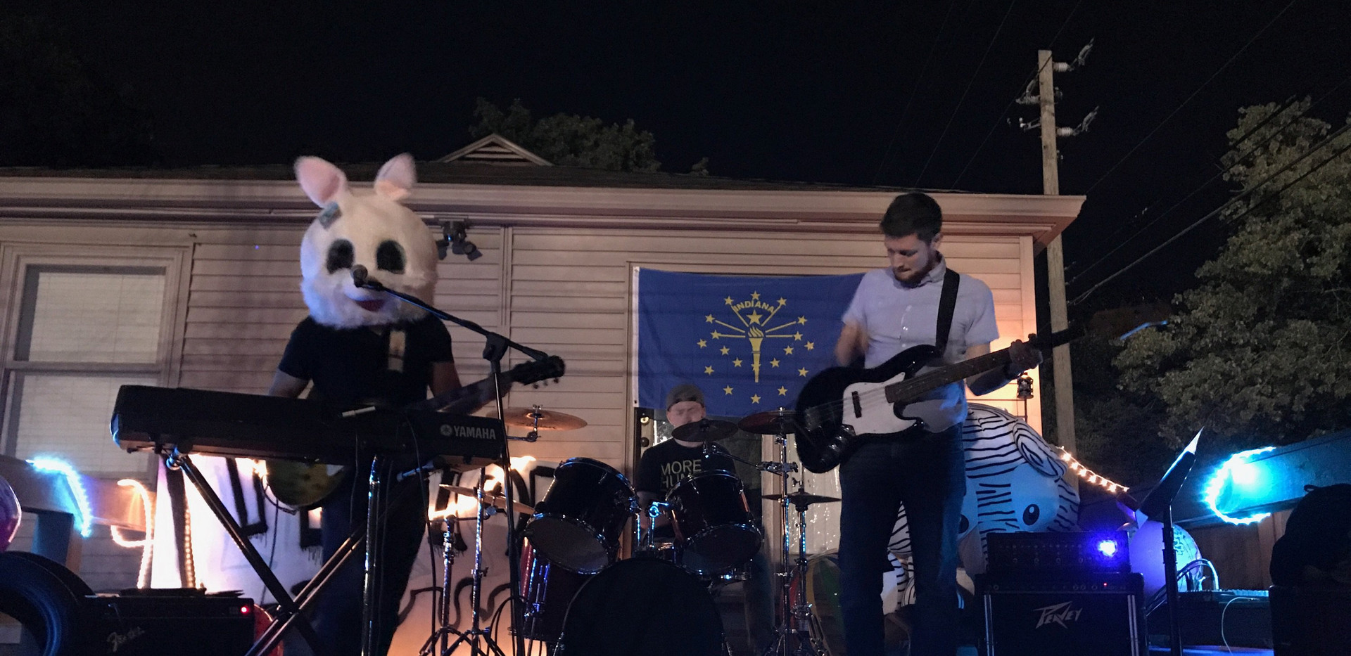 Cradle Cat house show.jpeg