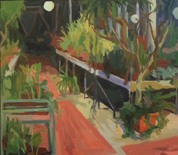 Night Greenhouse