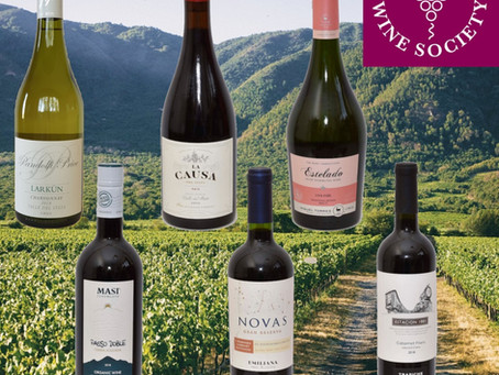 South America -  Exciting Wines From Argentina & Chile