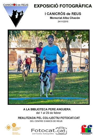Cartell Pere Anguera2.jpg