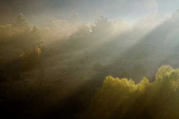 Işık ve duman