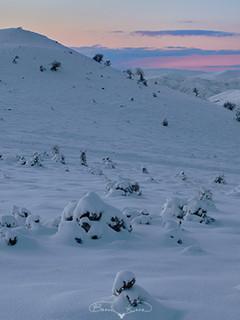 Bozkırda kış günbatımı No.2 - 2021