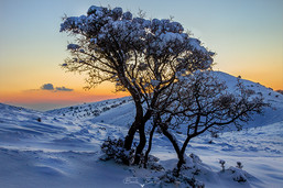 Bozkırda kış günbatımı No.1 - 2021