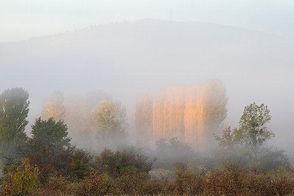 Köyde sisli sonbahar