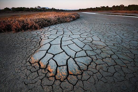 Toprağın dokusu