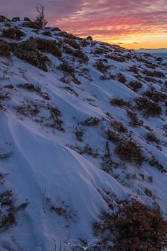 Bozkırda kış akşamı No.2 - 2021