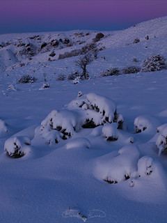 Bozkırda kış akşamı No.1 - 2021