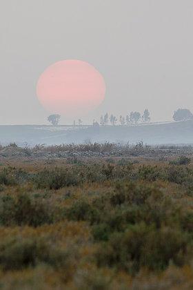 Deltada gün batımı