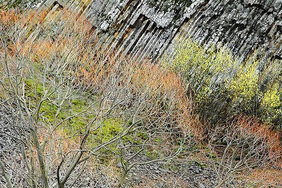Lav duvarındaki manzara