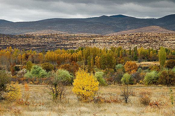 Kırsaldaki sonbahar