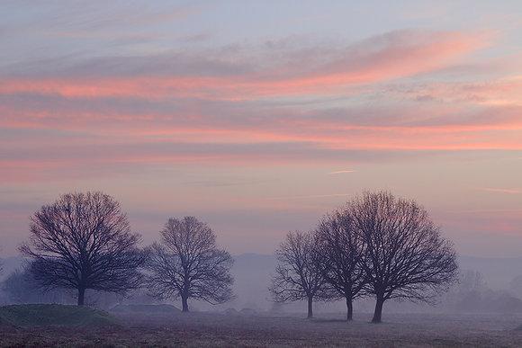 Sisli sabahın renkleri