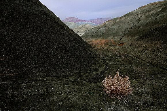Çöl tepeleri