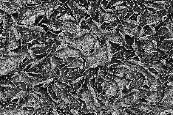 Kum desenleri
