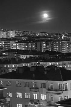 Siyah Beyaz #12 - 2011