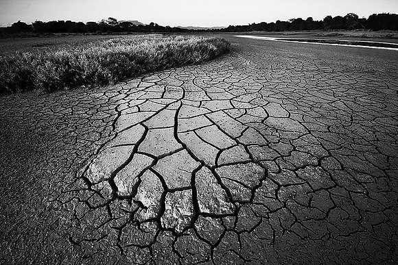 Toprağın dokusu (SB)