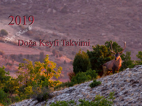 2019 DUVAR TAKVİMİNİZ HAZIR...