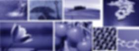 banner-carta-servizi.jpg