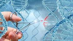 genetica1.jpg