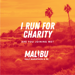 I run for charity_Orange.png