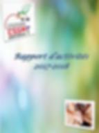 rapport_activité_image.png