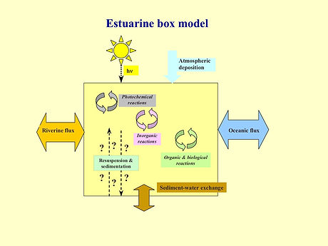 Estuarine box model.jpg