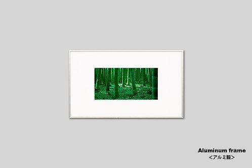 京都,嵯峨野,竹林,写真,インテリアフォト,風景,自然,日本,インテリア,アート,額入り,額装,オリジナルプリント,アートフレーム,フォトフレーム,おしゃれ,モダン,壁掛け,壁飾り,装飾,ウォールアート,新築祝い