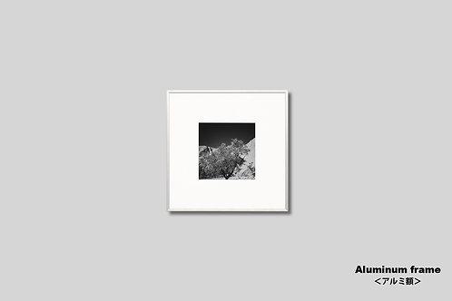 オーストラリア,ウルル,インテリアフォト,写真,風景,オリジナルプリント,モノクロ,額入り,正方形,アート,額縁,額装,アートフレーム,アートポスター,おしゃれ,モダン,新築祝い,プレゼント,フォトフレーム,壁掛け,壁飾り,装飾