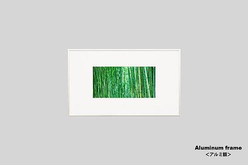 写真,インテリアフォト,日本,京都,竹林,風景,インテリア,アート,額入り,額装,オリジナルプリント,アートフレーム,フォトフレーム,おしゃれ,モダン,壁掛け,壁飾り,装飾,ウォールアート,新築祝い