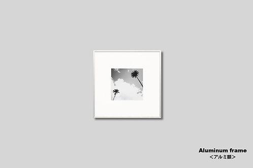 ヤシの木,写真,モノクロ,正方形,額入り,インテリア,風景,空,インテリアフォト,アート,オリジナルプリント,アートフレーム,フォトフレーム,おしゃれ,モダン,壁掛け,壁飾り,装飾,部屋飾り,額装,アートポスター,ギフト