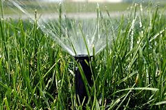 lawn sprinkling