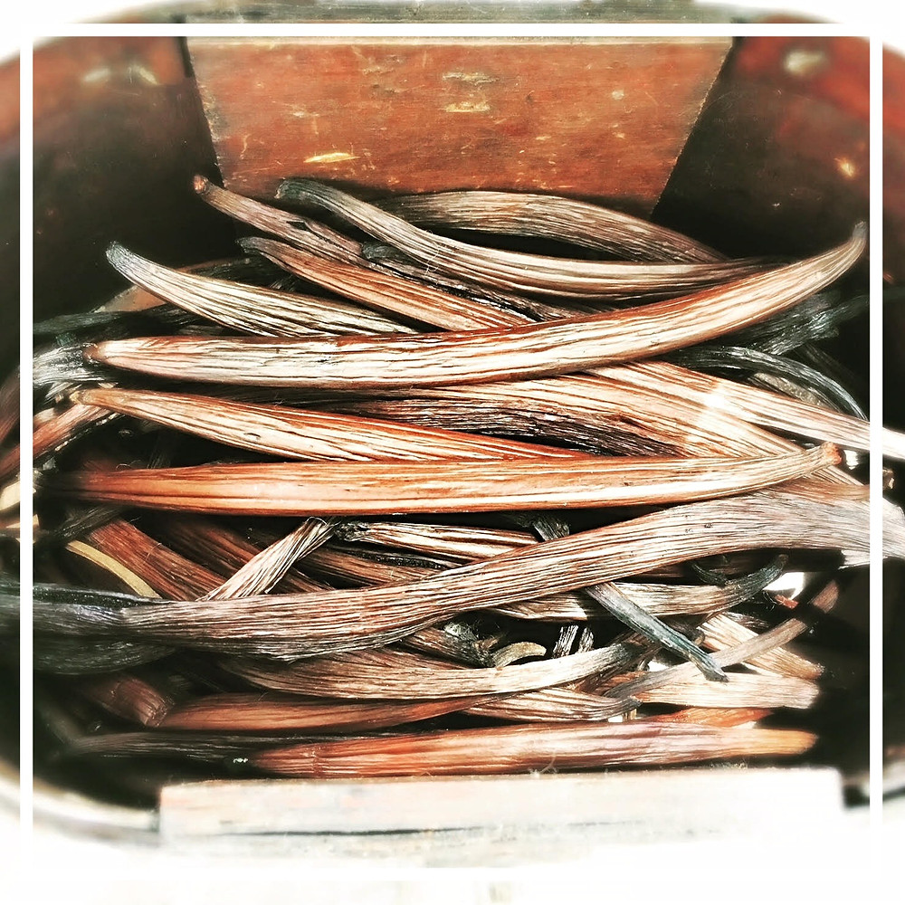 Cured Organically Grown QLD Vanilla Pods