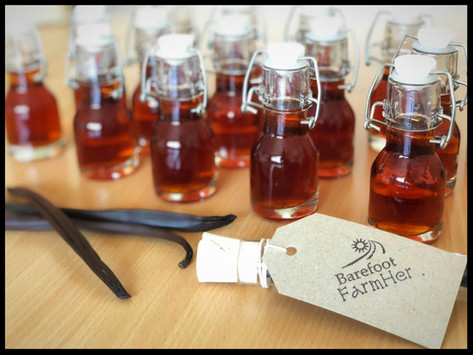 Exclusive Release - 1 Year Aged Queensland Organically Grown Pure Vanilla Extract