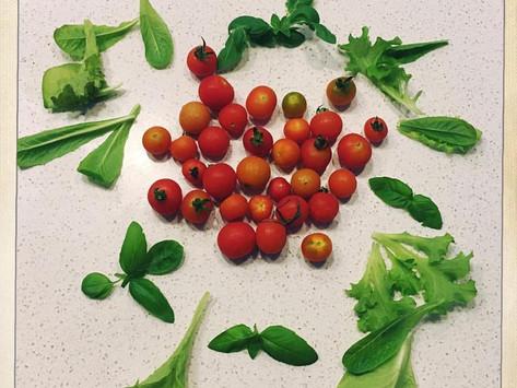 An Abundance of Fresh Produce