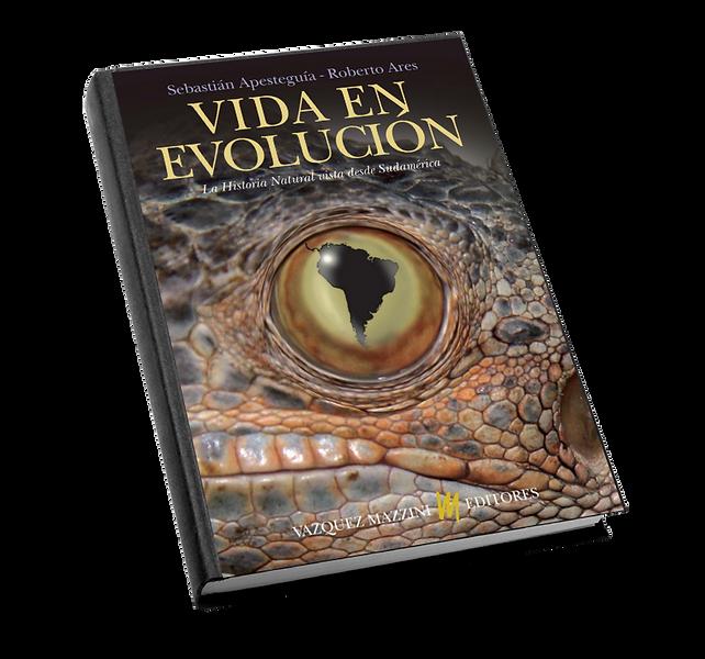 evolucion0.png