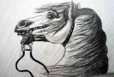 Pencil Drawing - Original