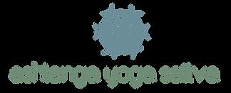 AYS logo-02_edited.png