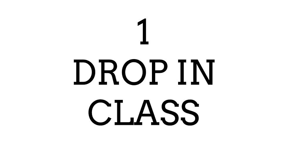 1 Drop In Class- $10