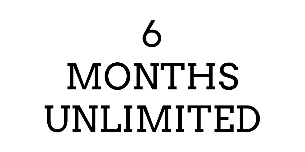 6 Months- Unlimited ($300)