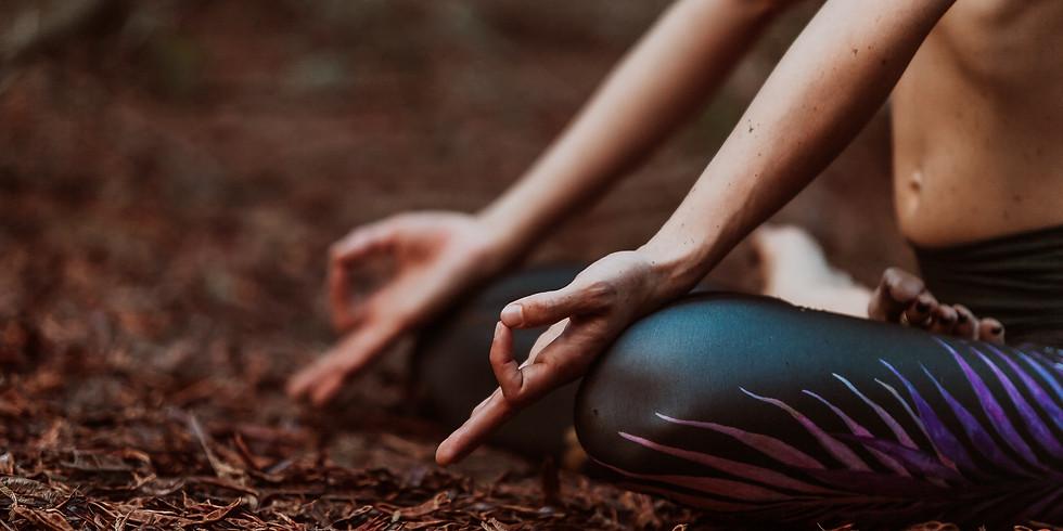 Introdução à Meditação