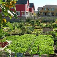1024px-High_Point_community_garden.jpg