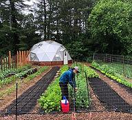 jenny-in-the-garden_orig.jpg