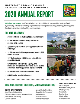 2020 Annual Report p1.png
