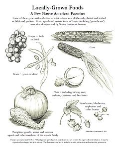 c.p. 2020 Native American Foods NOFA-NH.