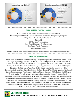 2020 Annual Report p6.png