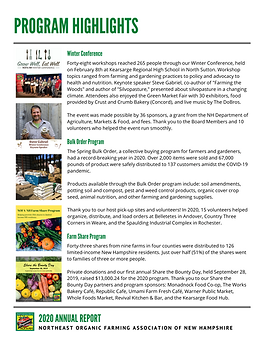 2020 Annual Report p2.png