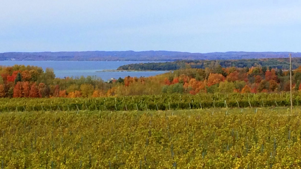 Wineries of Northern Michigan