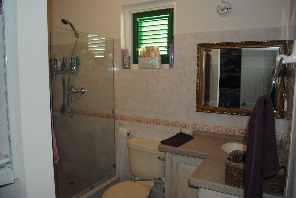 Emerald Living | Second Master Bath