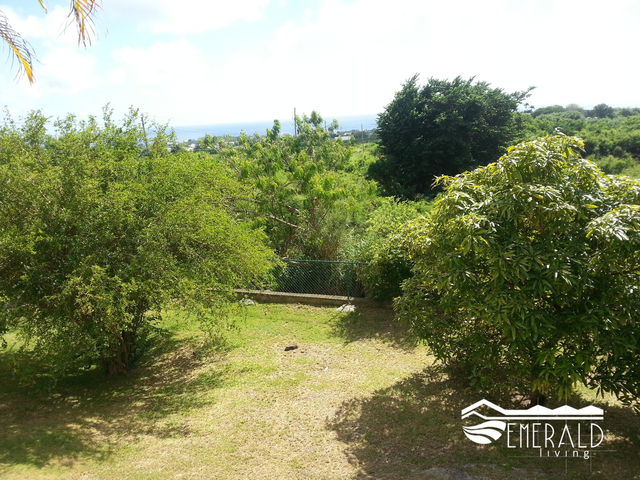 Fruit Trees & South Coast View