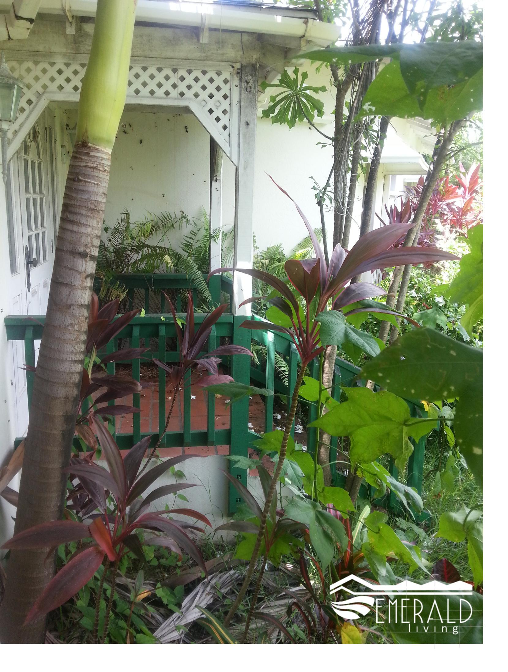 Emerald Living | Front Steps