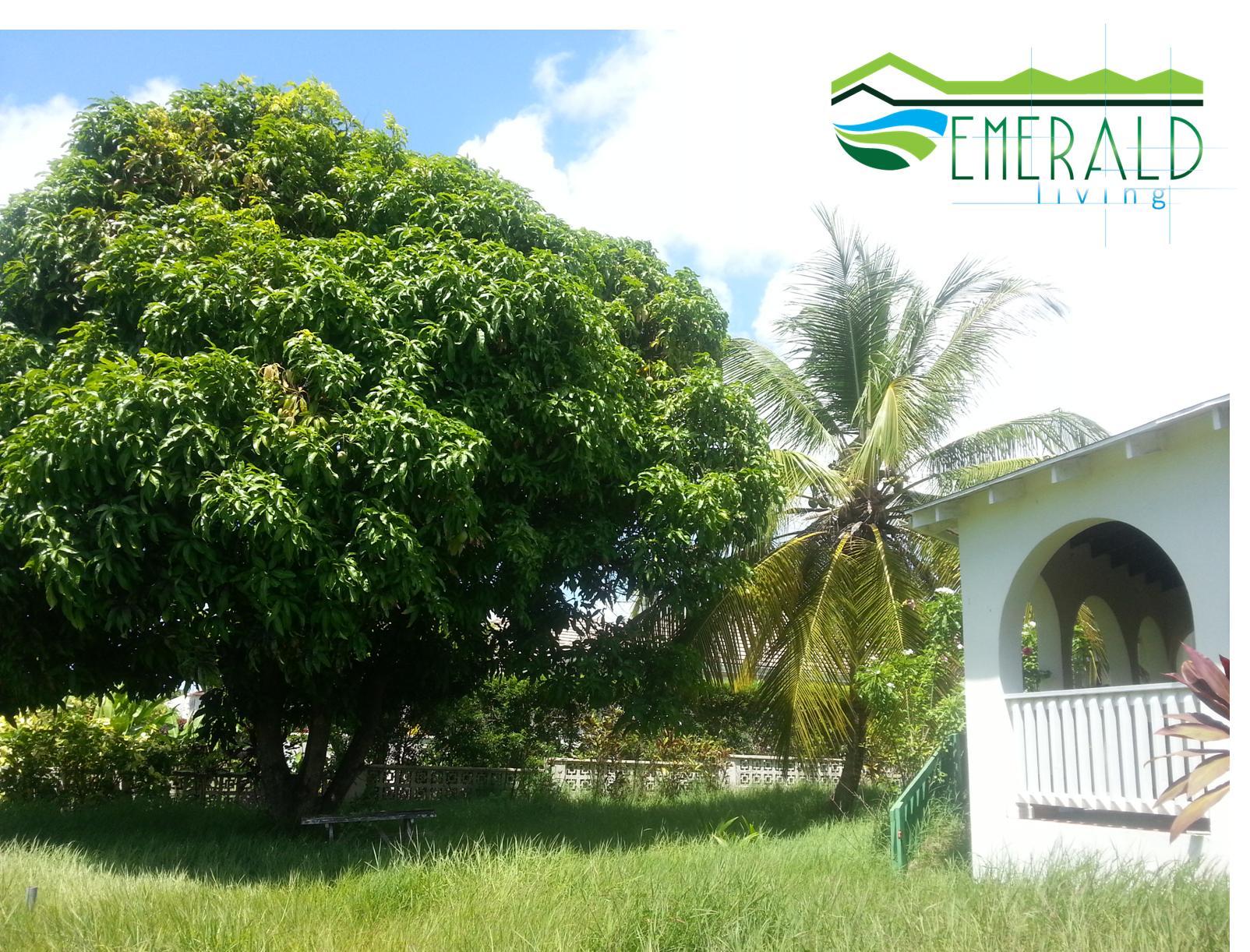 Emerald Living | Back Garden